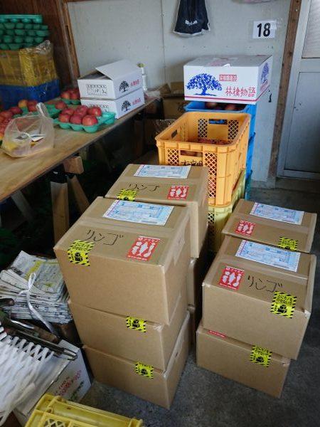 会津のリンゴ販売しています。